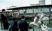 В Сиднейском порту
