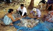 Тайские цыгане