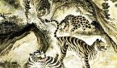 Тигр, пятнистый, как леопард