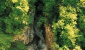 Река в районе Шкоцанских пещер