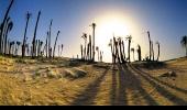 Жаркое солнце пустыни