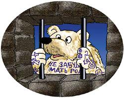 Тюрьма для медведей