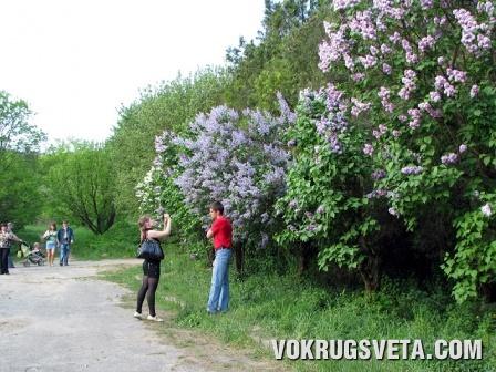 Киевский Ботанический сад