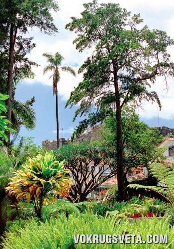 В саду усадьбы Киита-даш-Крузаш