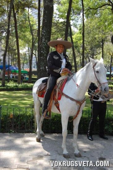 конный полицейский