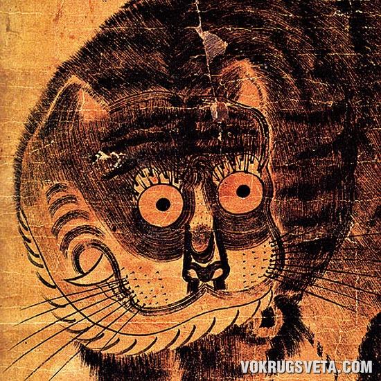 Корейский тигр