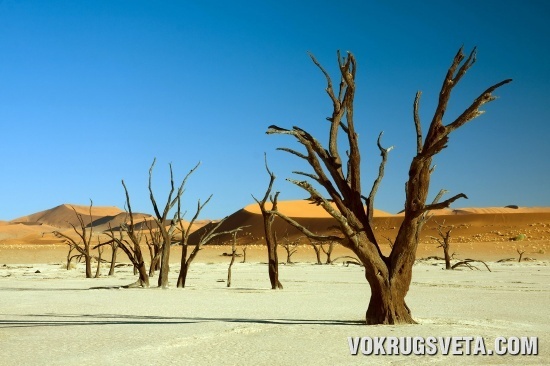 Намиб-Науклюфт