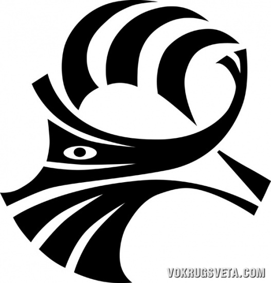 Логотип Фонда исследований истории мореплавания