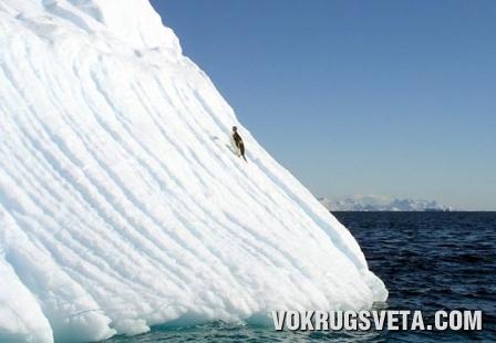 Ледовая природа Антарктики