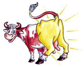 Лосины в моде у коров