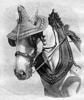 Соломенная шляпа для лошади
