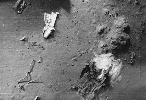 Куски теплоизоляционных материалов и другие обломки, найденные «Триестом»