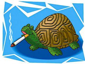 Курящая черепаха